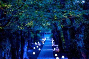 かまくら長谷の灯かり