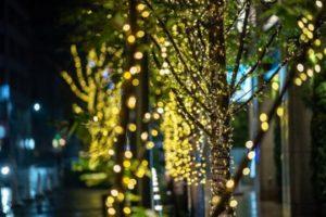 京橋エドグラン クリスマスイルミネーション2019