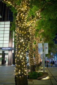 東京ミッドタウン スターライトガーデン 2019