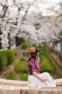 呑川緑道・呑川親水公園の桜