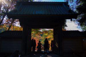 臨済宗大本山 円覚寺