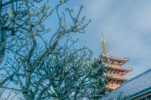 金龍山浅草寺