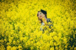 江戸川土手の流山市菜の花ロード